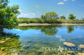 Central Texas ranch sale 214 acres, Hamilton county image 1