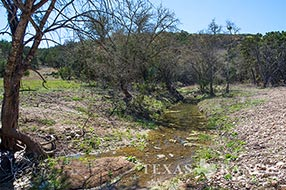 Hill Country ranch 293 acres, Kerr county image 2