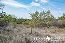 44 acre ranch Uvalde County image 10