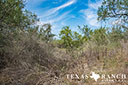 44 acre ranch Uvalde County image 13