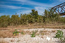 44 acre ranch Uvalde County image 22