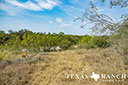 44 acre ranch Uvalde County image 2