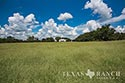 483 acre ranch Lampasas County image 2