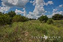 483 acre ranch Lampasas County image 50