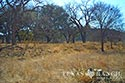 793 acre ranch Kimble County image 20