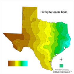 Texas Average Rainfall.